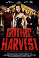 Gothic Harvest Filmi izle tek parça